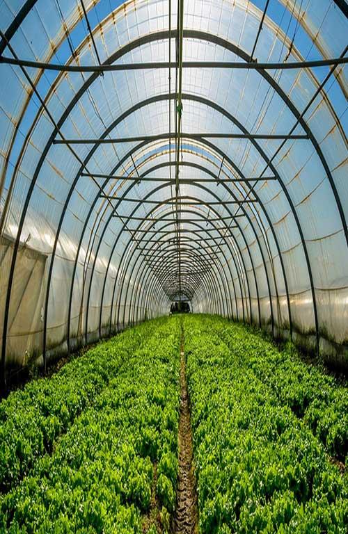کاربرد مواد پلیمری در صنعت کشاورزی